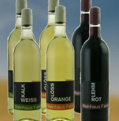 Terroirwein-Paket - Bioweine aus der Pfalz
